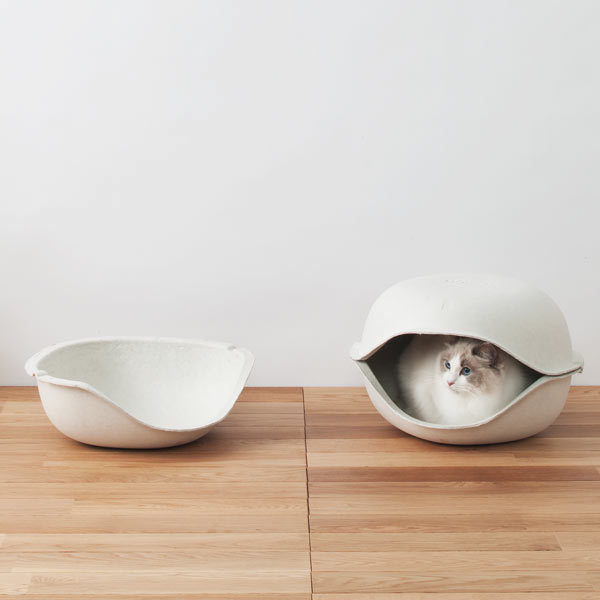 Cat+Shell+By+Oppo