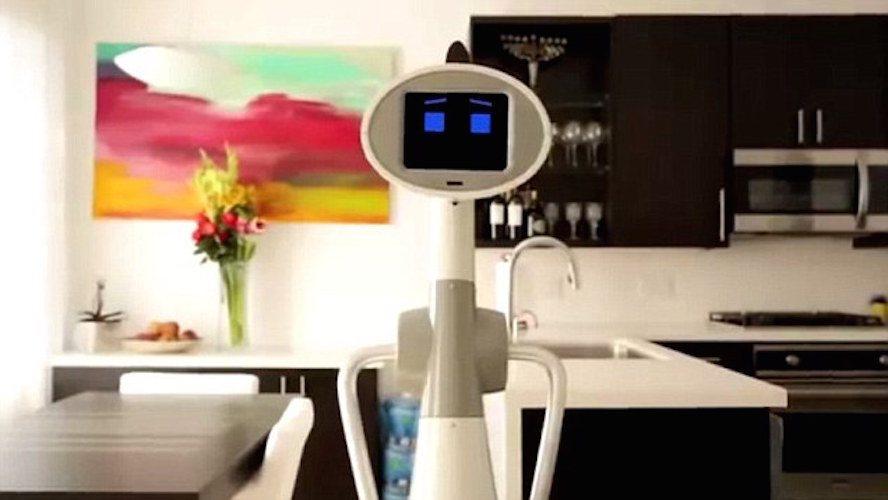 Luna Personal Robot