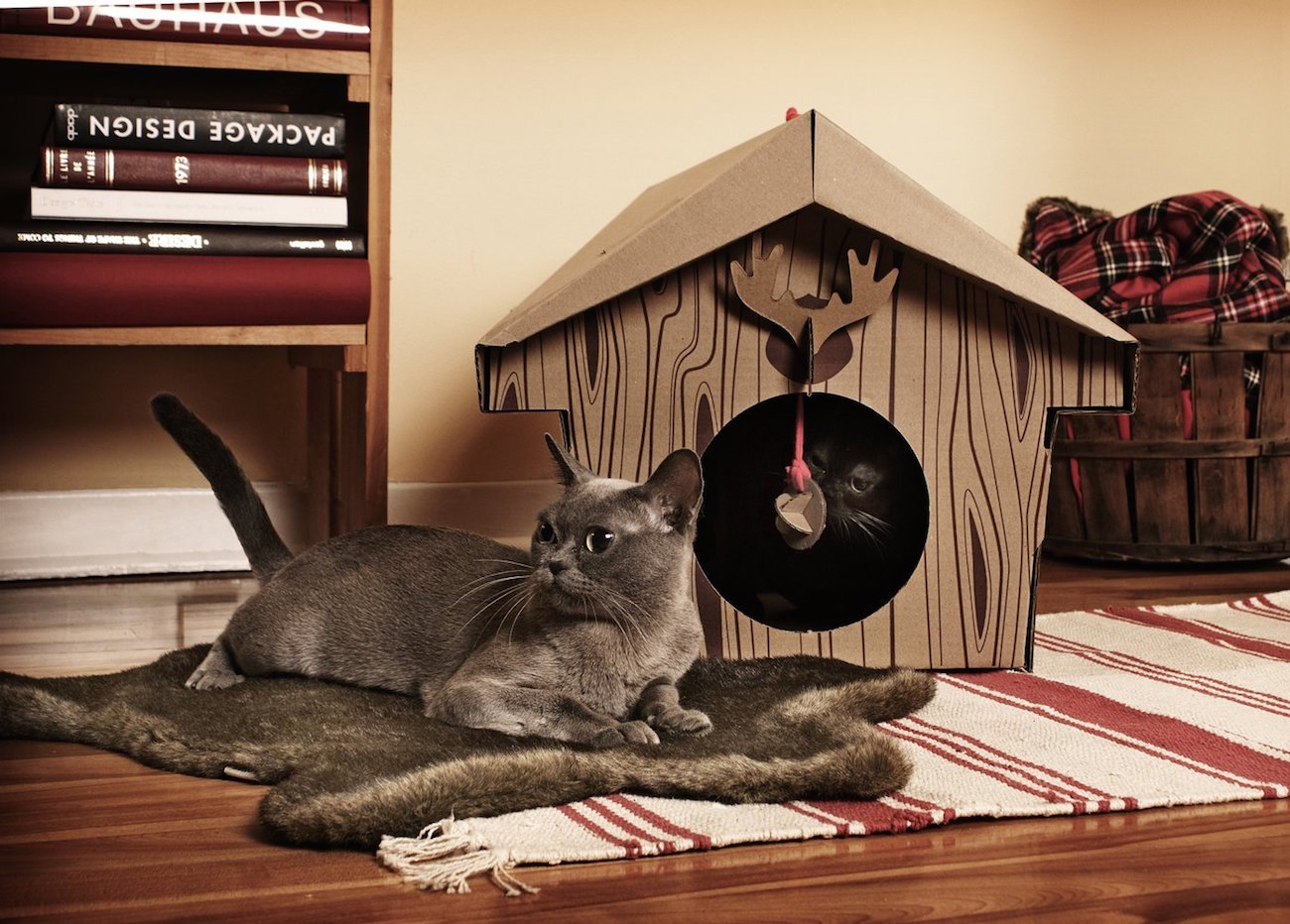 canadian-cabin-cat-house-01