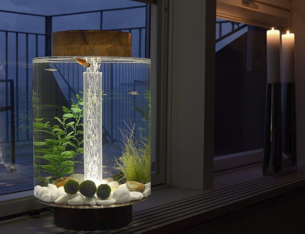 The Norrom Aquarium 03
