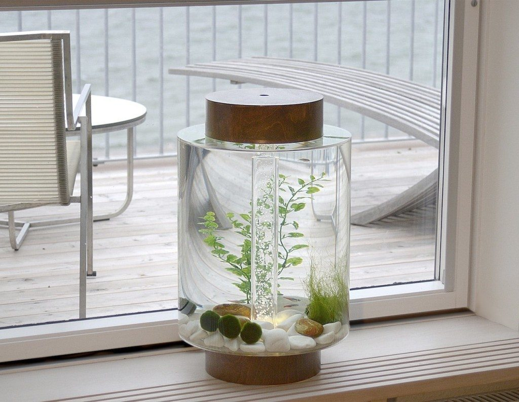 Fish for vertical aquarium - Norrom Combines Swedish Design And 3d Printing In One Beautiful Fish Tank