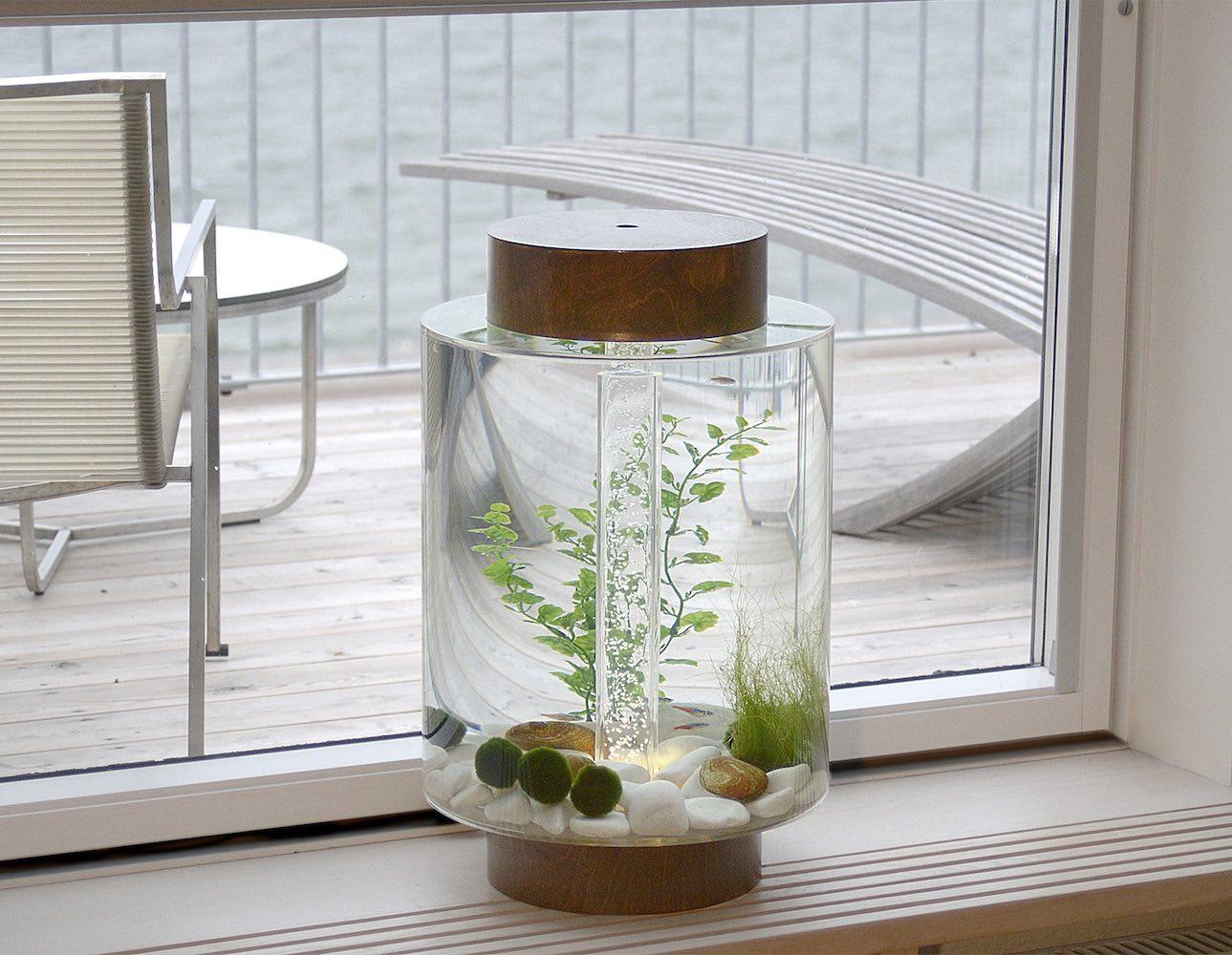 The Norrom Aquarium