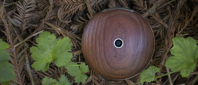 Runcible Is a Strange but Beautiful Watch-Phone Hybrid
