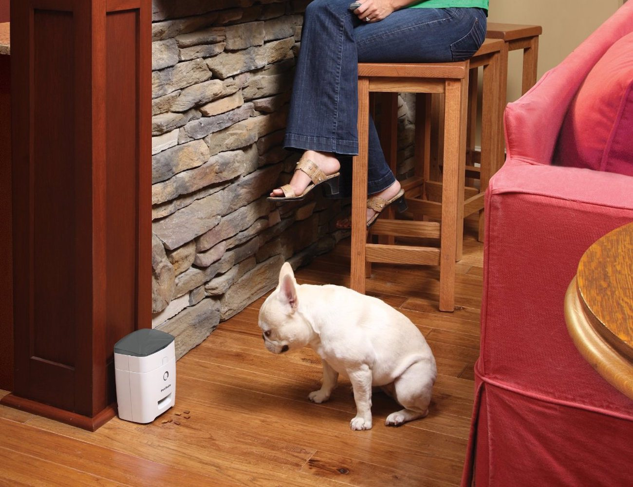 Dog Treat Dispenser >> Remote Dog Treat Dispenser By Petsafe Gadget Flow