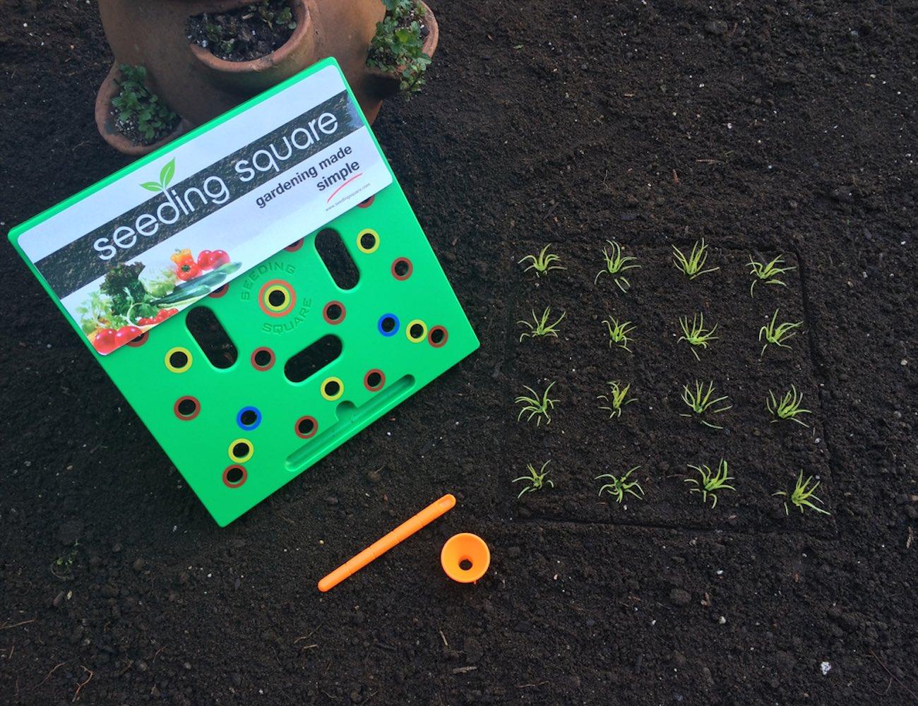 Seeding Square