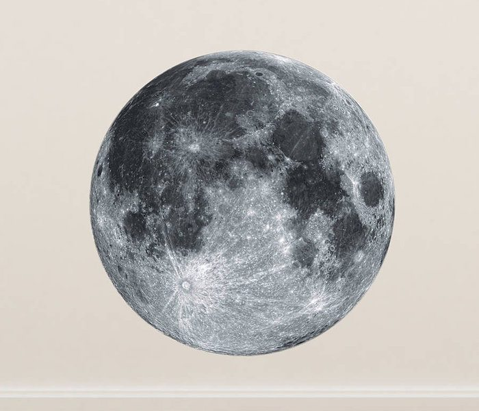 Full Moon Wall Sticker by Oakdene Designs