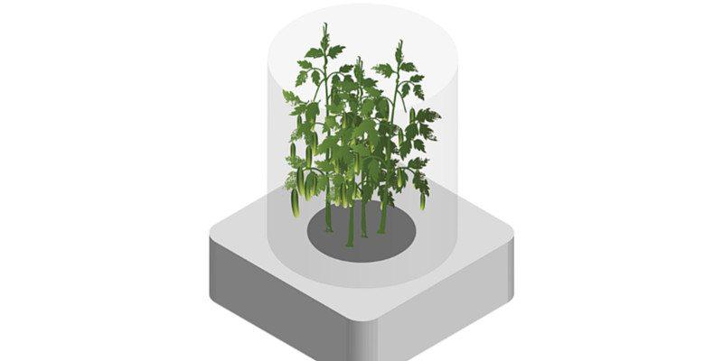 Click & Grow growing food on Mars