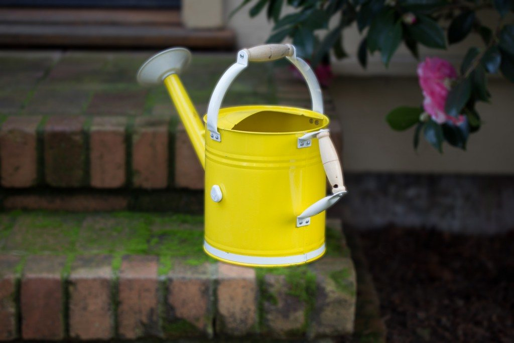 Watering can with Droplet