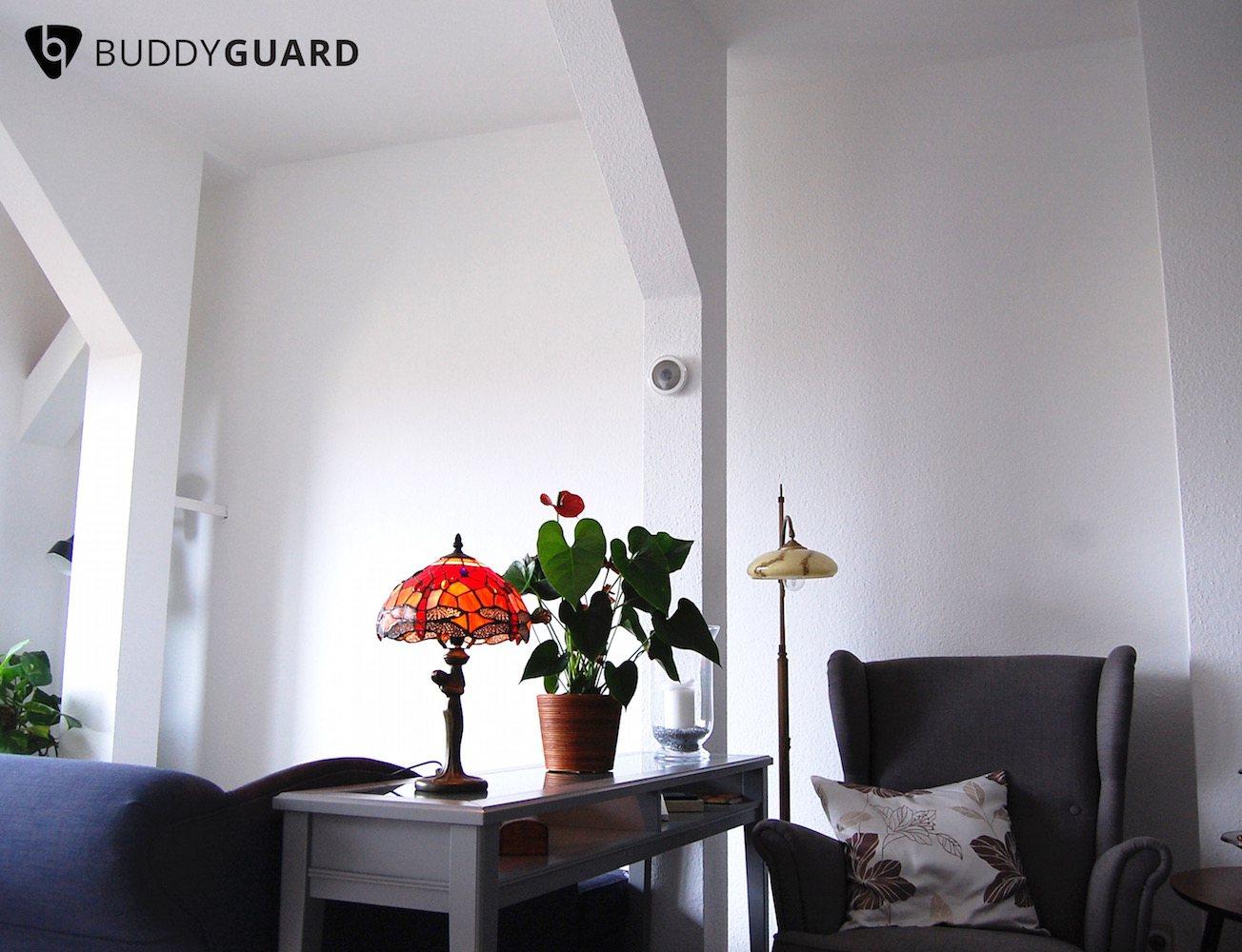 BuddyGuard Flare: Home Security