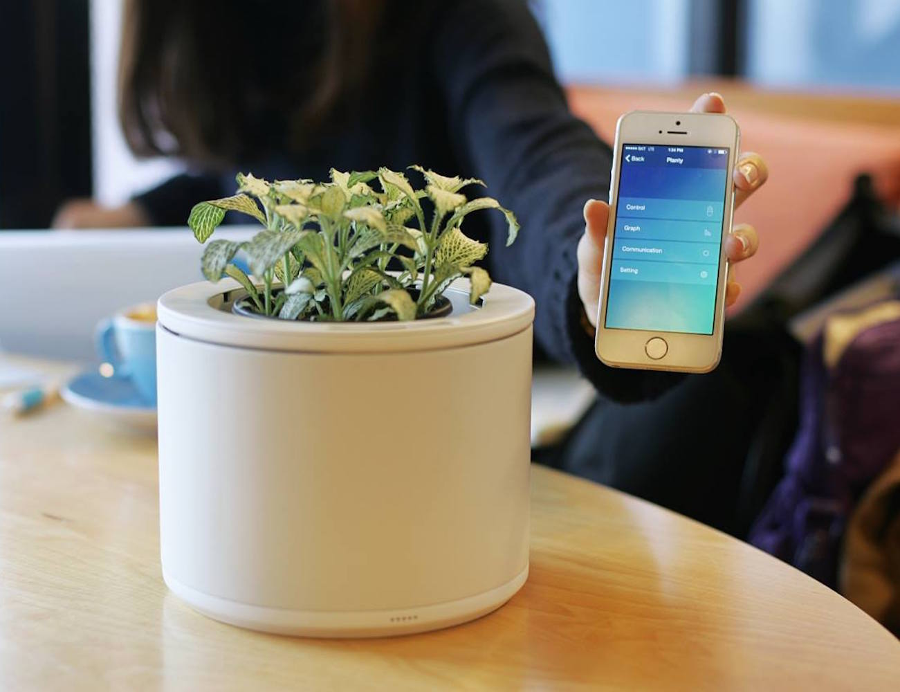 Planty – The Smart Way to Connect with Nature