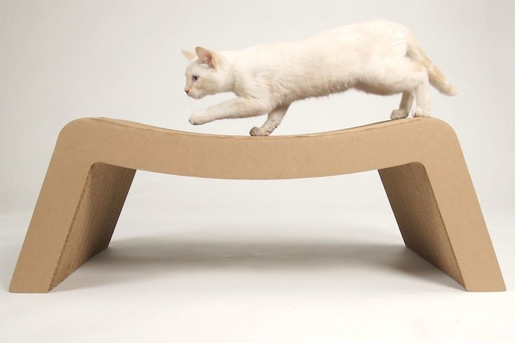 Prrrounge cardboard made pet s chaise lounge gadget flow for Build your own chaise lounge