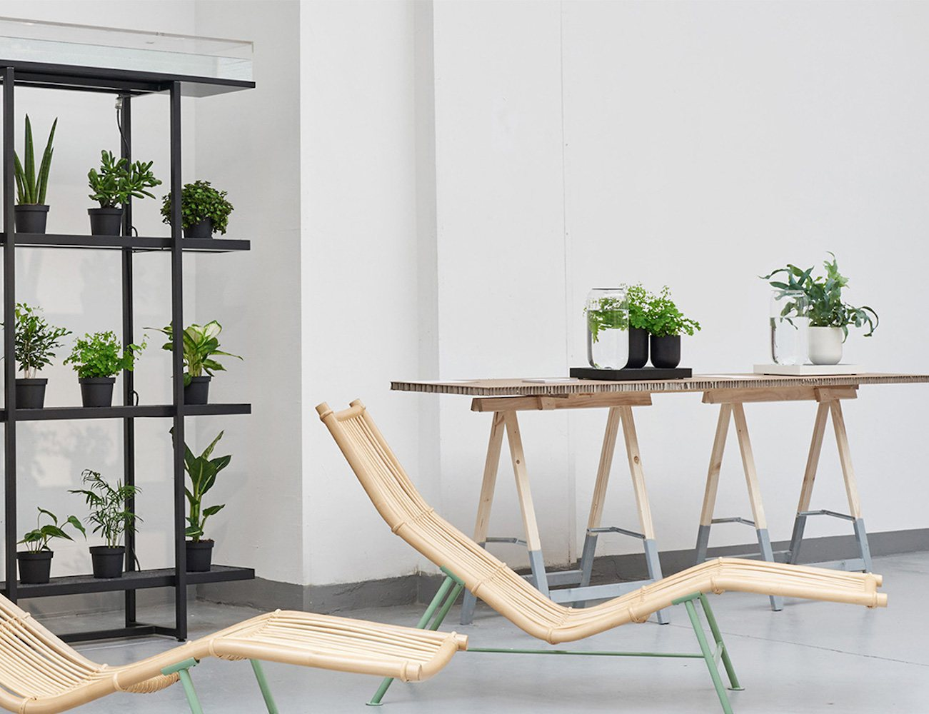 Tableau – Automatic House Plant Watering Tray