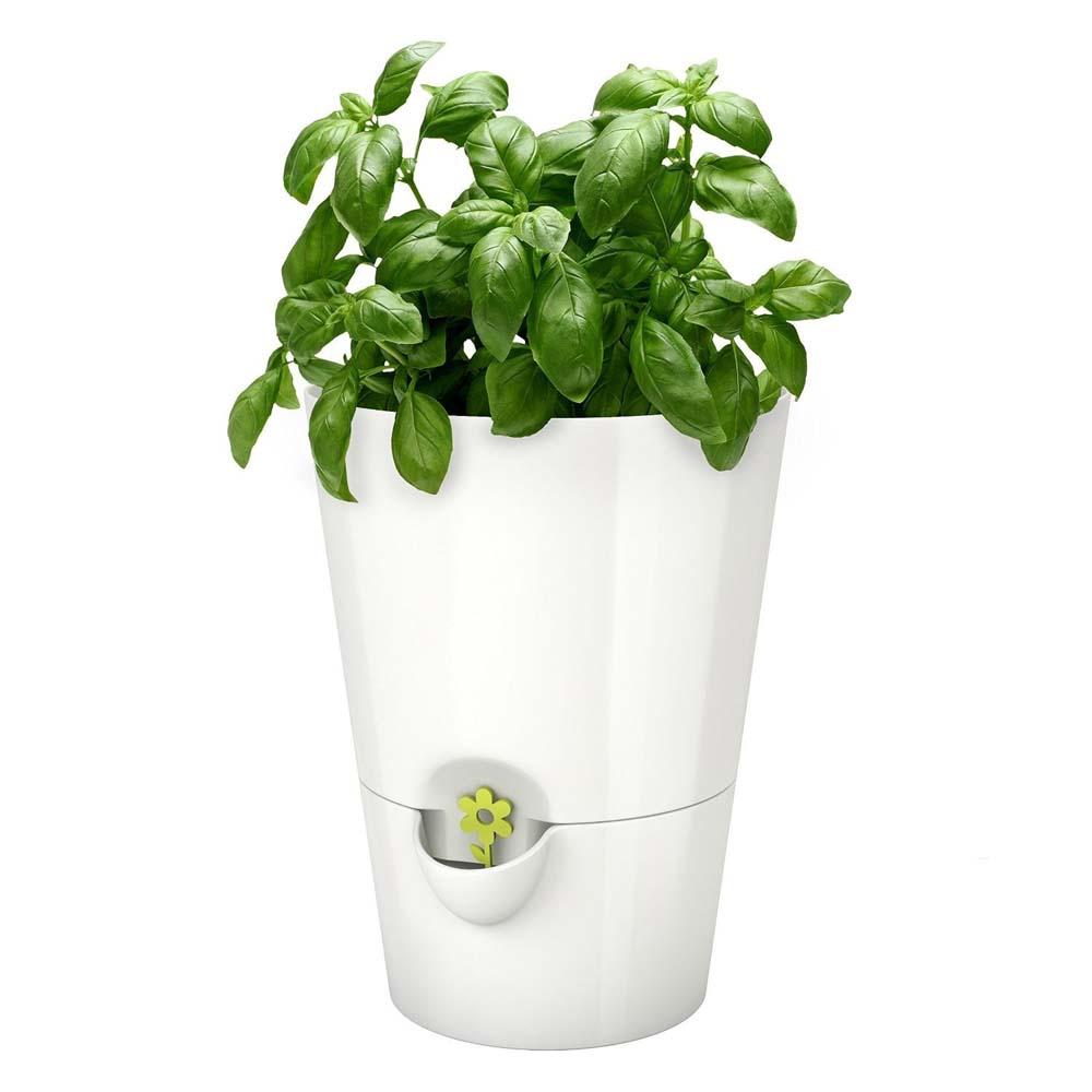 ... Smart Planter U2013 Designed For Kitchen Herbs ...