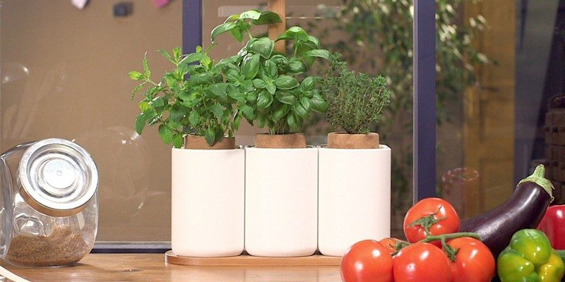 Lilo indoor planter on Kickstarter
