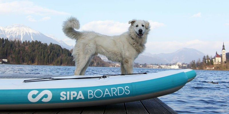 sipaboards self-inflating paddle board
