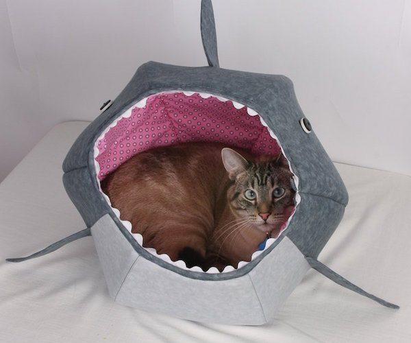 Cat Shark Bed – Cat Bed Celebrating Shark Week