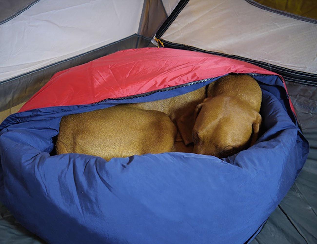Noblecamper 2-in-1 Ultralight Travel Dog Bed and Sleeping Bag