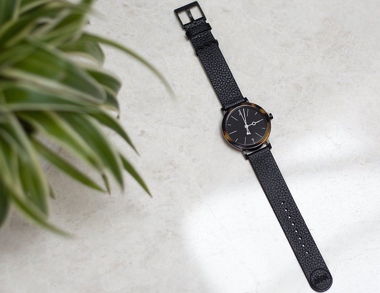 Shell Brown Tortoise Watch by Aark Collective