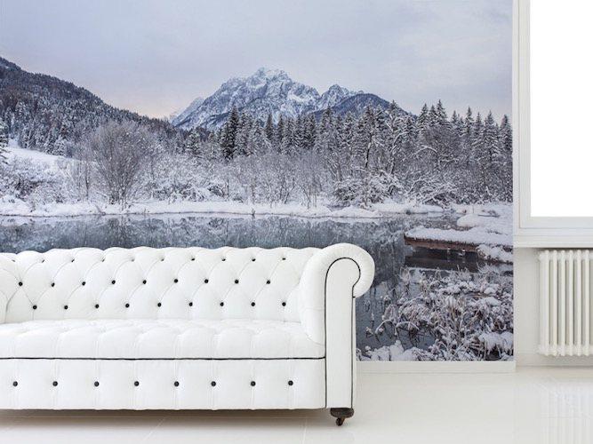 Winter in Slovenia Wall Mural