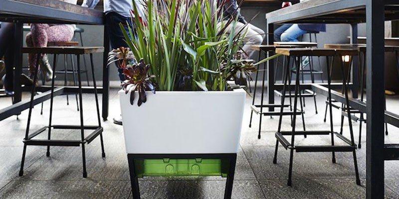 Urban Garden Self Watering Planter