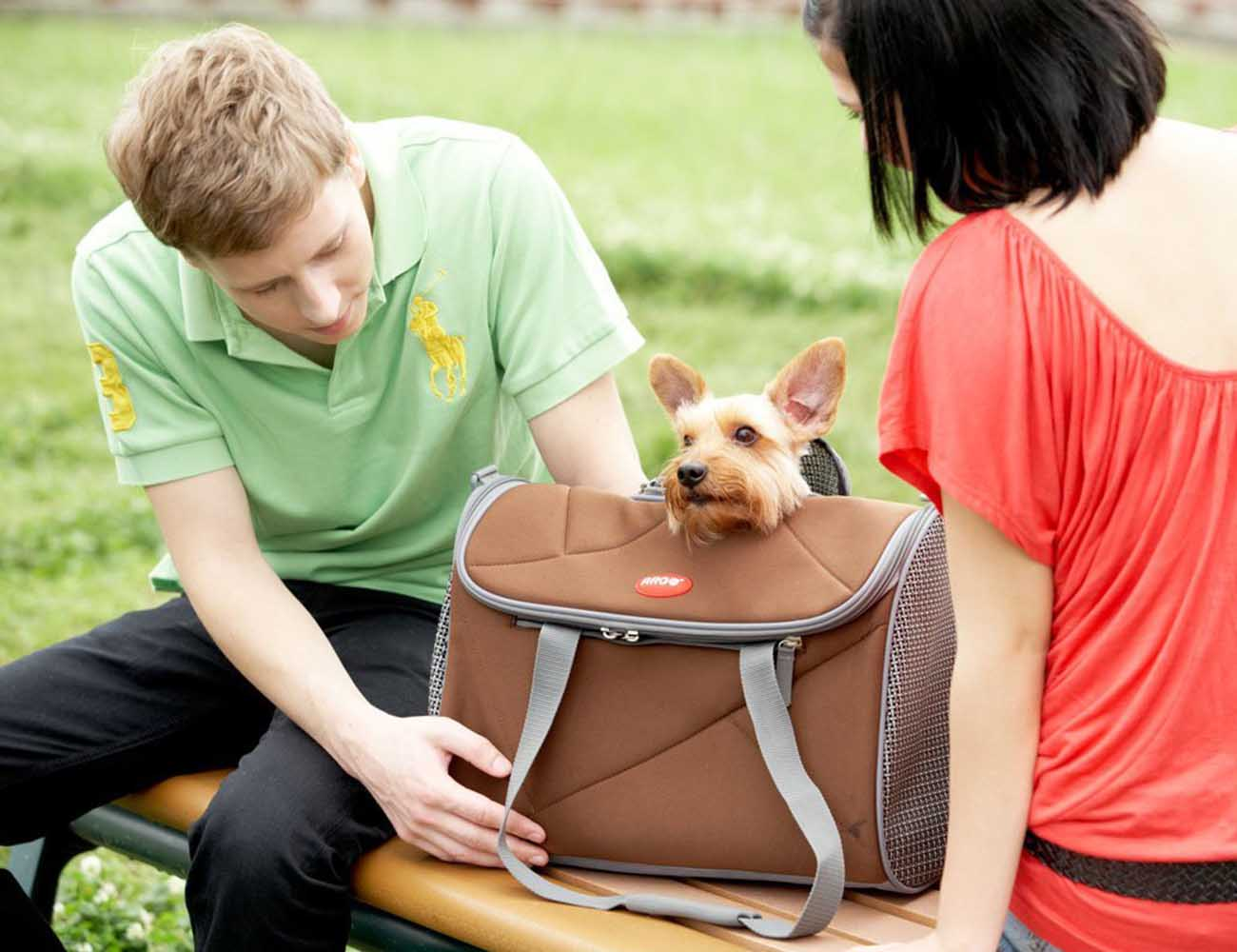 Avion Pet Carrier