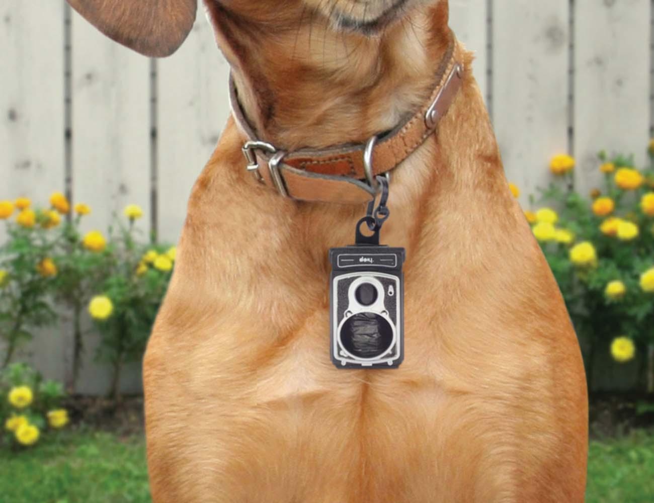 Rolldog+Pet+Bag+Dispenser