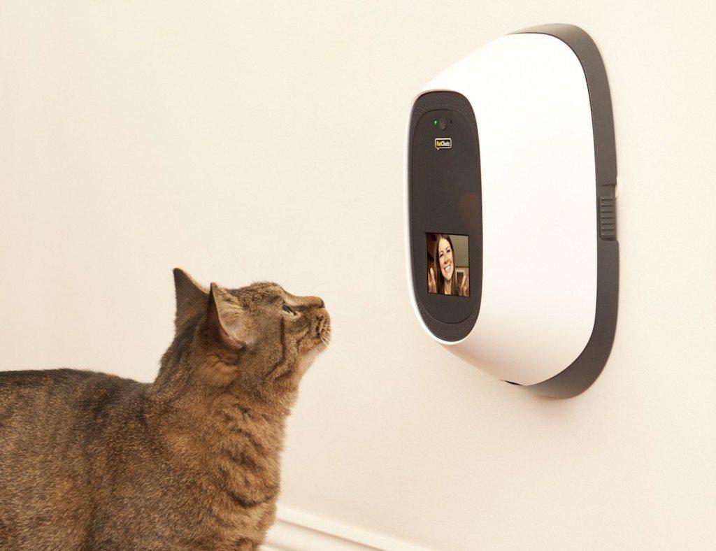 PetChatz Two-Way Video Camera & Treat Dispenser