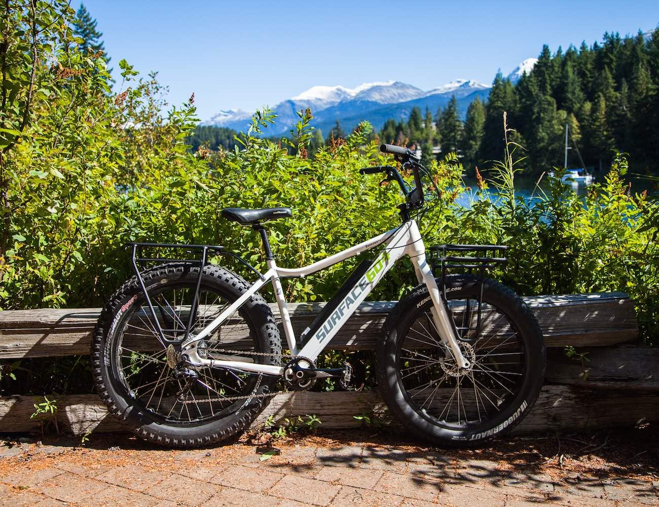 The 2016 Surface 604 Boar Electric Fat Bike