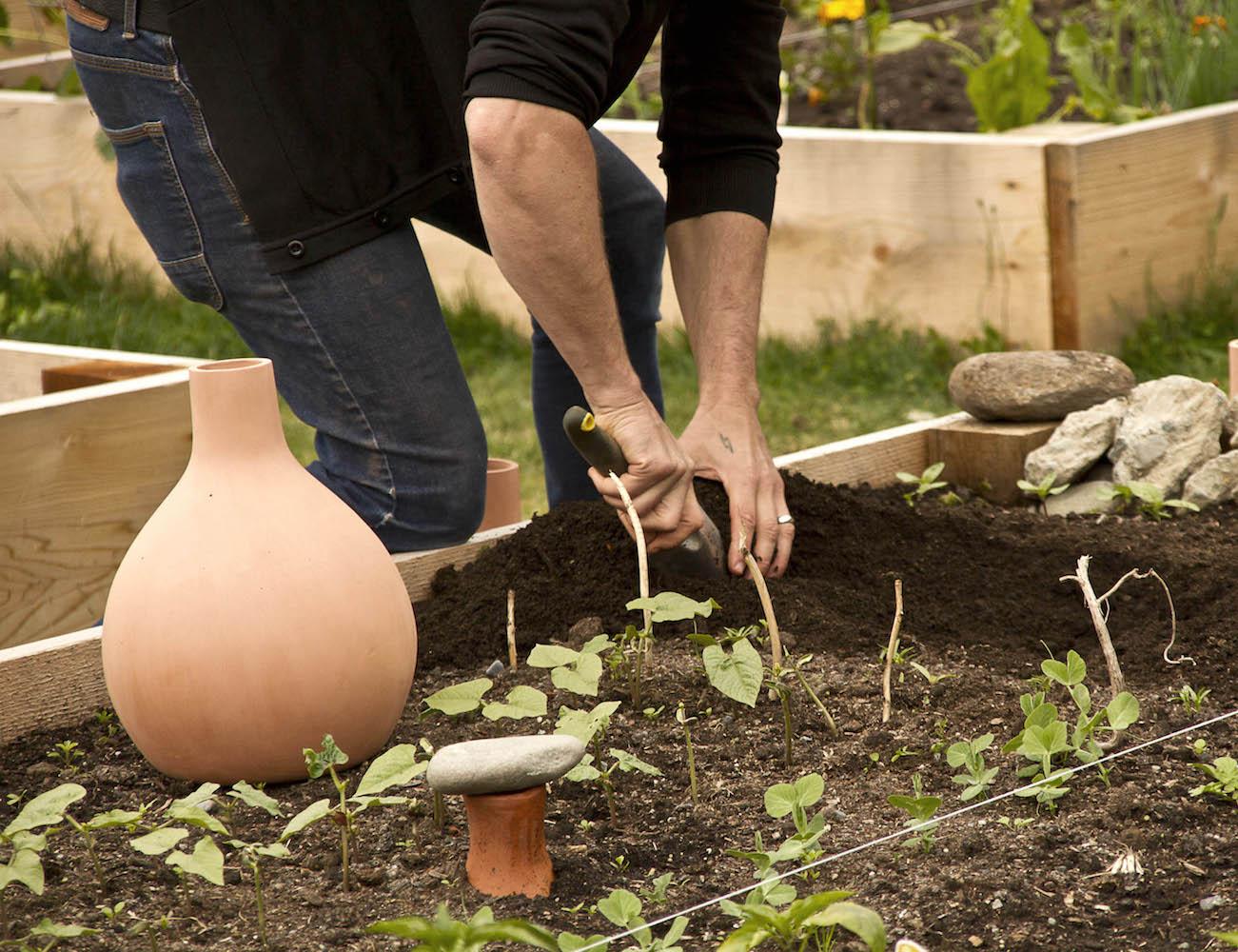 GrowOya – Save Water, Grow Easy