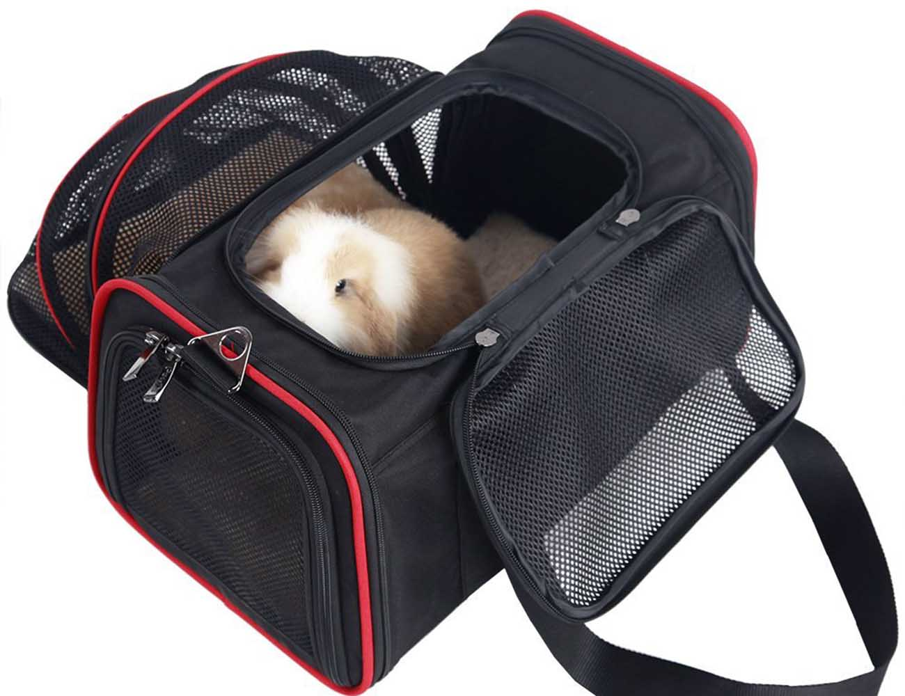 Expandable+Dog+Carrier+By+Petsfit