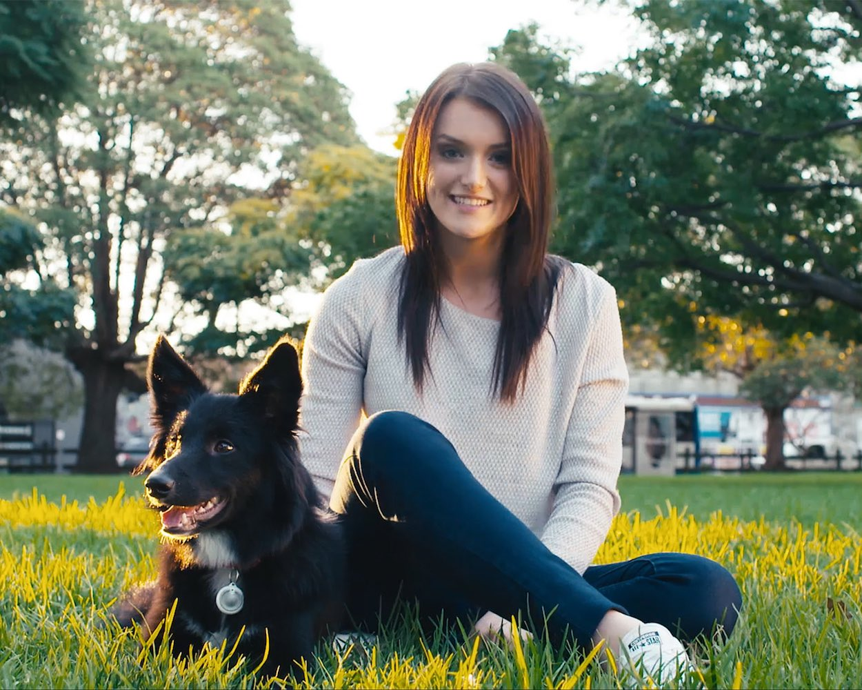 Petguard –One Stop Solution to Train Your Pets