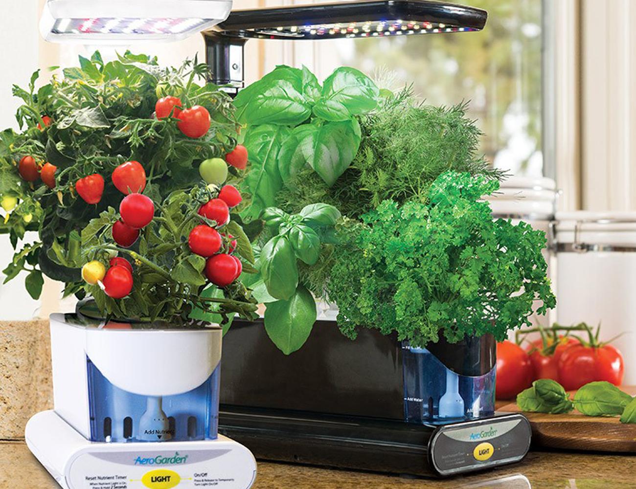 Miracle-Gro AeroGarden with Gourmet Herb Seeds