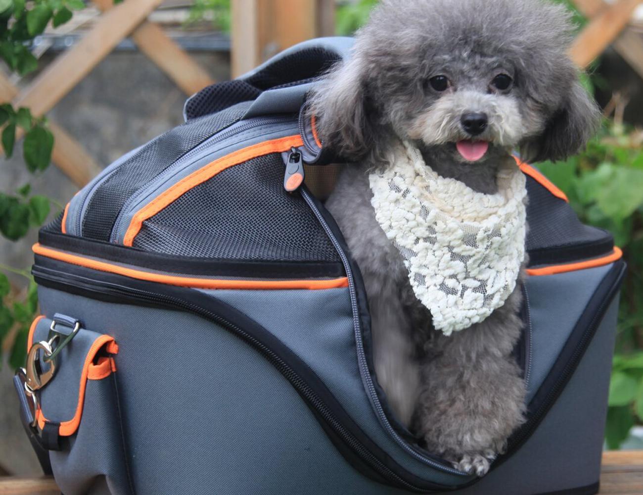 Petsfit Mobile Pet Carrier