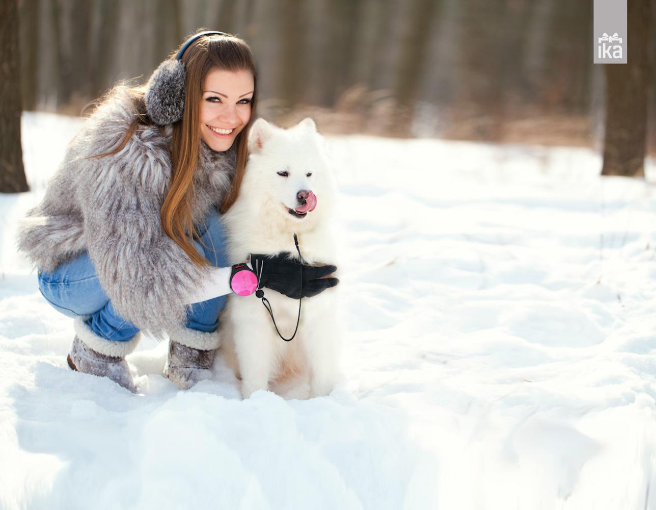 Lishinu – The Hands Free Dog Leash