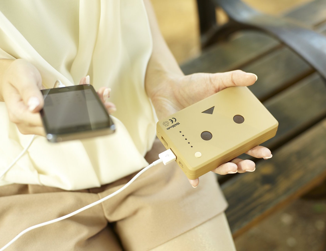 Power+Plus+DANBOARD+External+Battery+Pack+By+Cheero