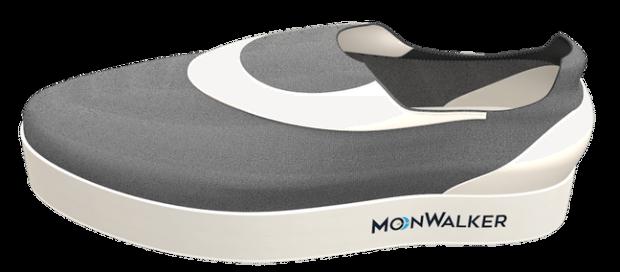MoonWalker prototype