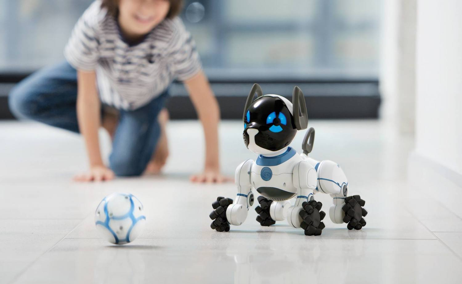 CHiP Affectionate Robot Dog behaves according to your responses