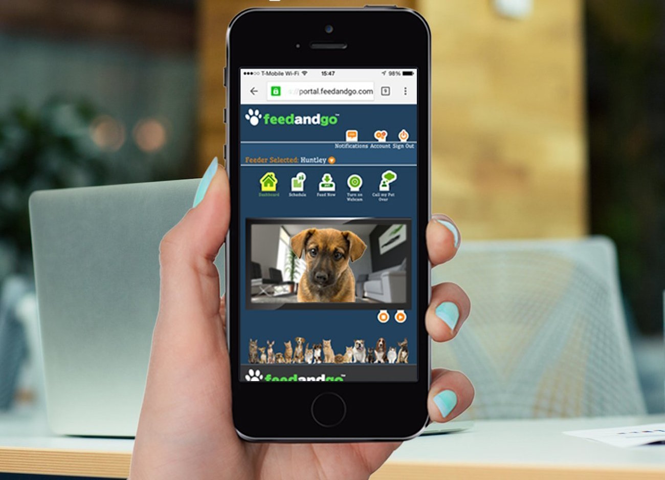 vision smart way night camera feeder dog ios feeding for audio two wifi lens android angle and app support store remotely product wide schedule pet
