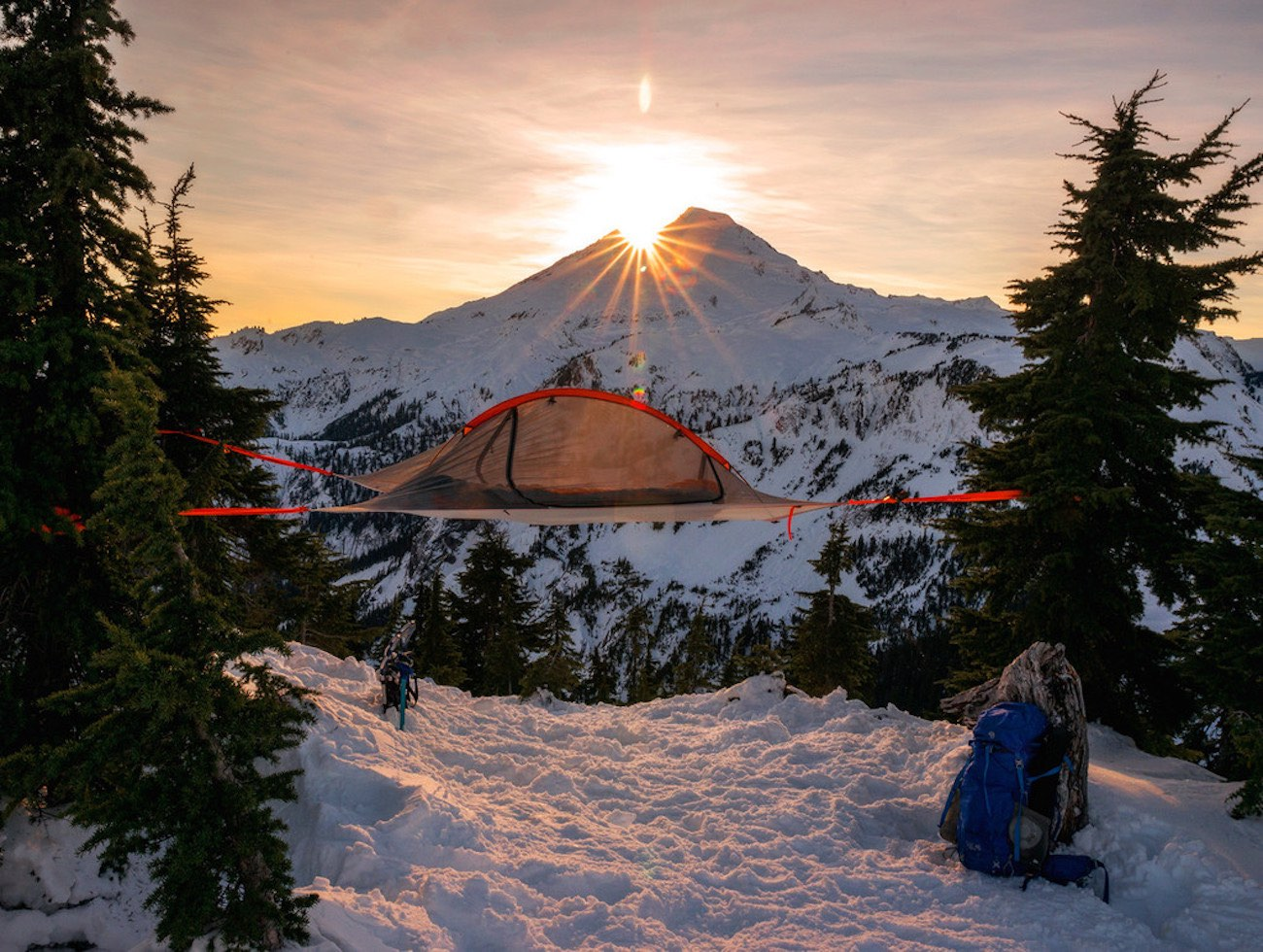 Flite Tree Tent from Tentsile ... & Flite Tree Tent from Tentsile » Gadget Flow