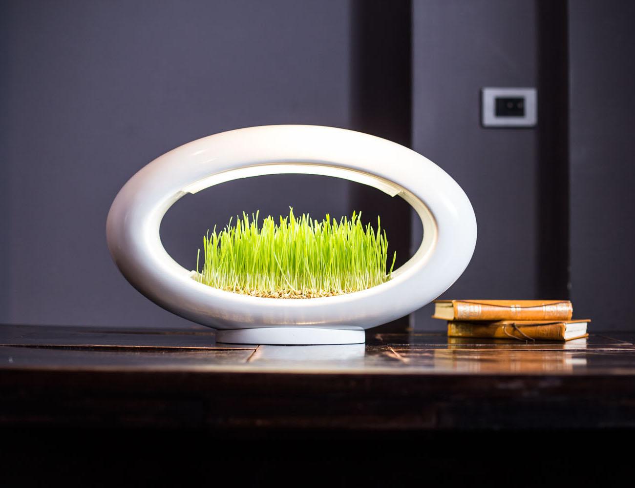 Grasslamp+%E2%80%93+The+Desktop+Garden+And+Light