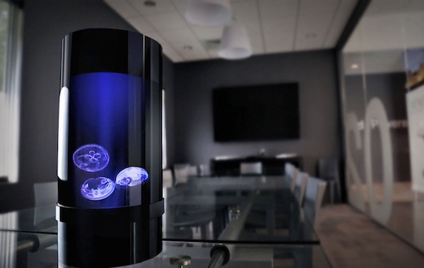 Jellyfish Cylinder Nano Turns Your Office Desk Into a Small Aquatic Farm
