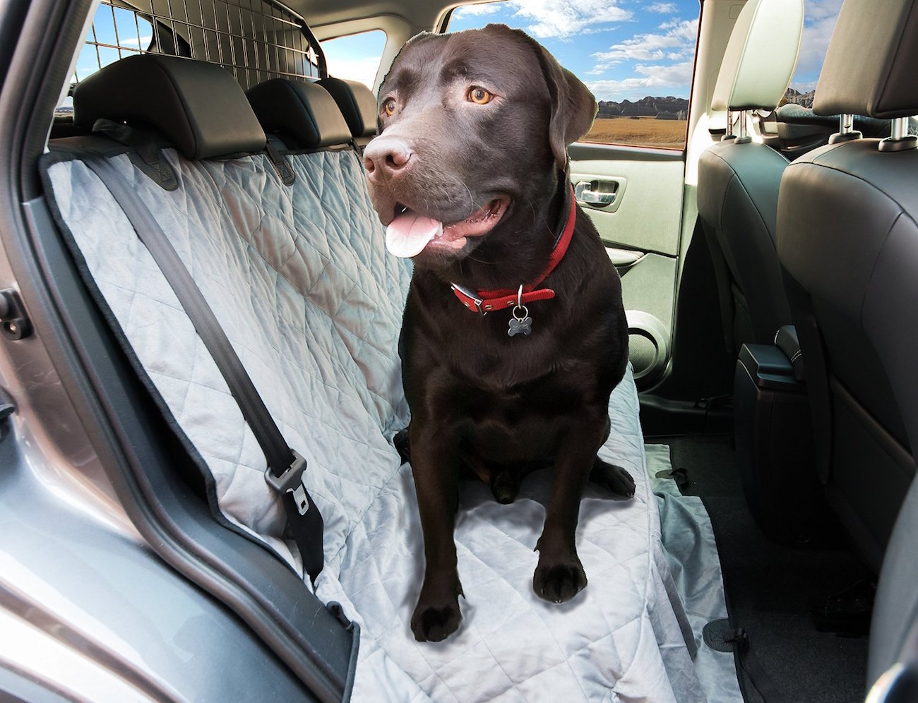 Luxury All Over Dog Seat Cover