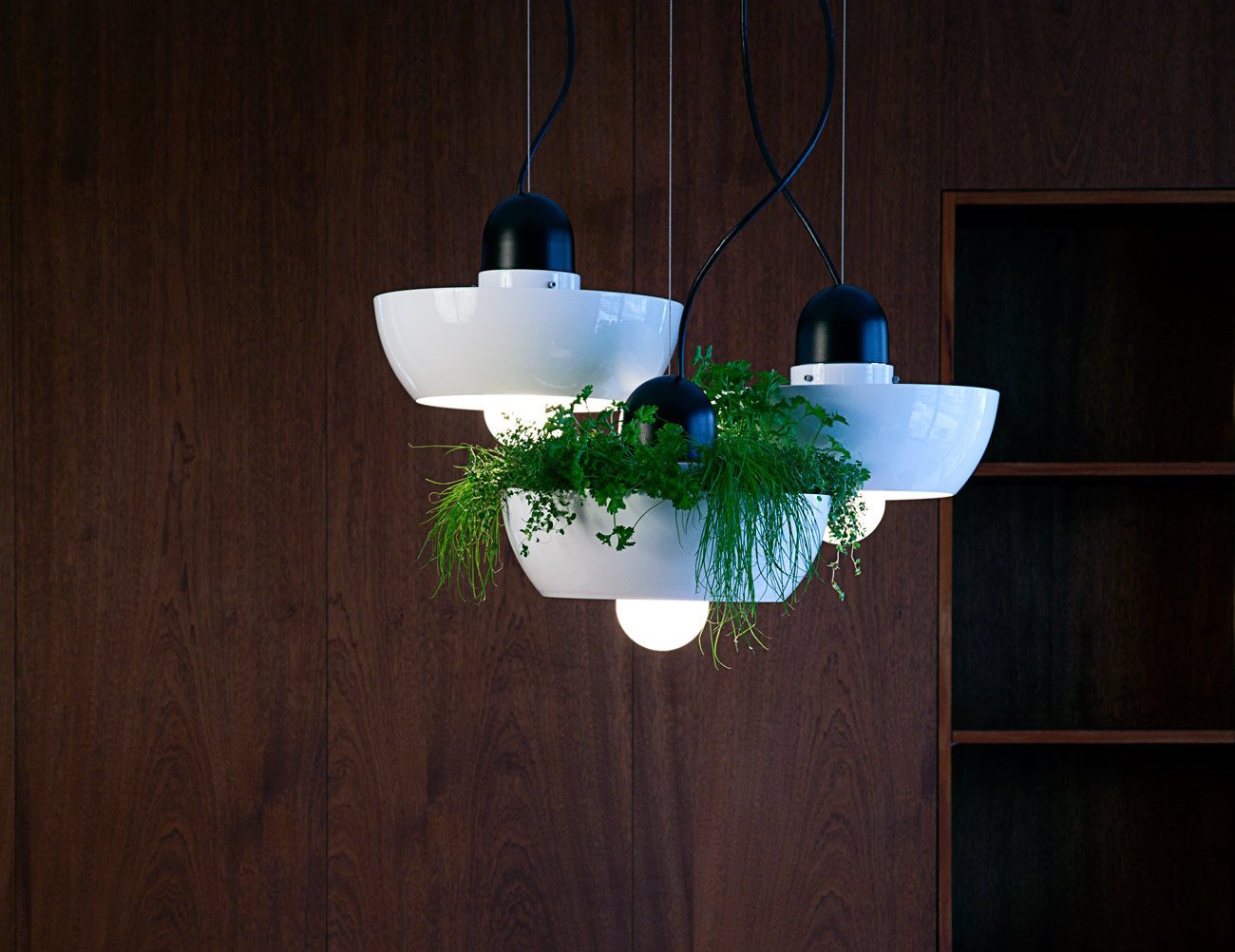 Well+Light+Planter+By+Object%2FInterface