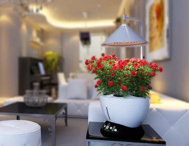 iGrow LED Indoor Hydroponics Herb Growing Kit