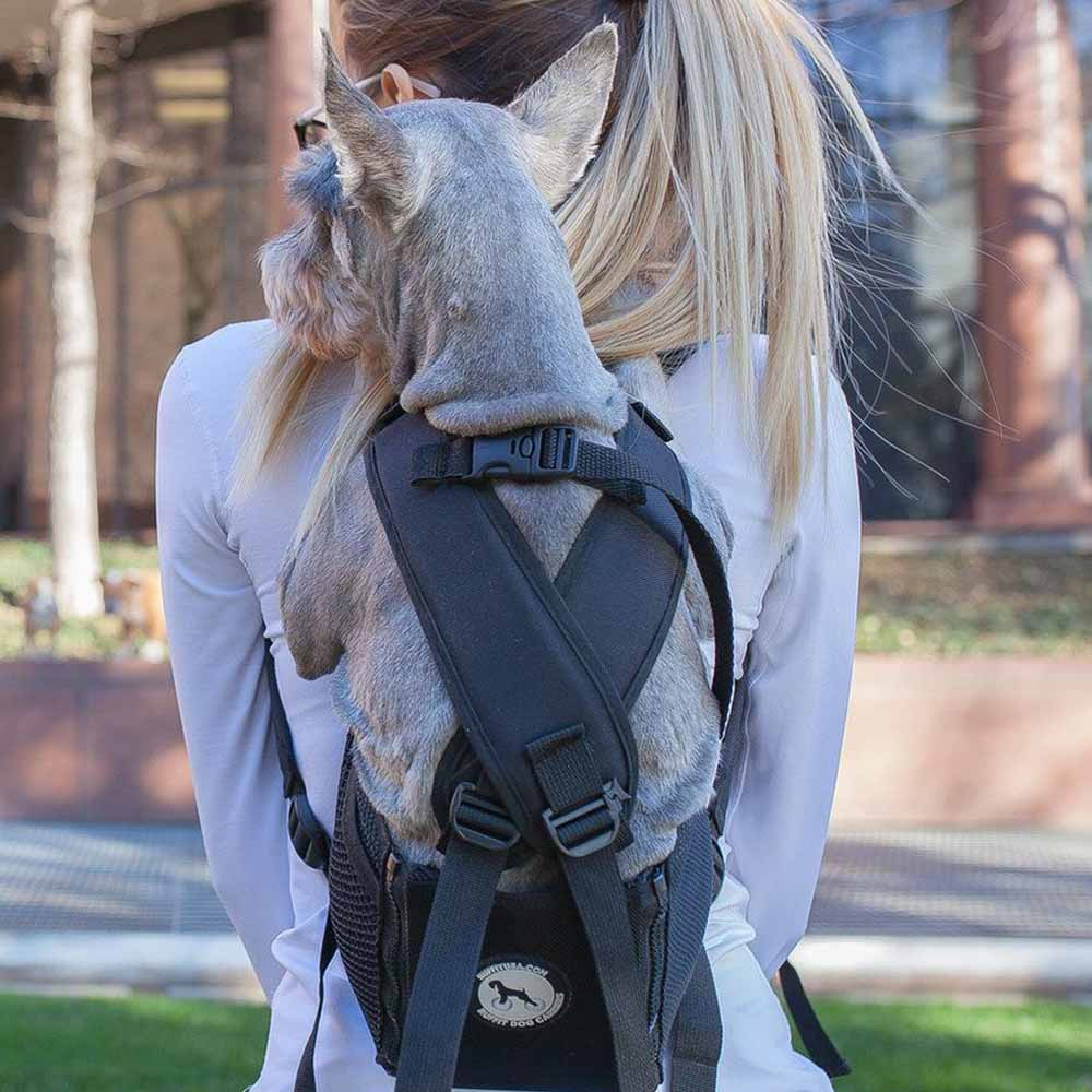 Dog Carrying Backpack by Ruffit
