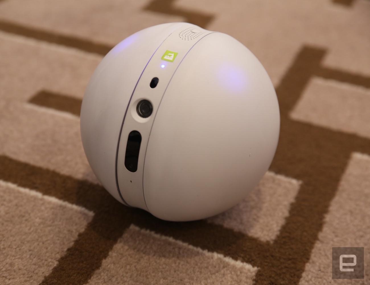 LG Robot Ball