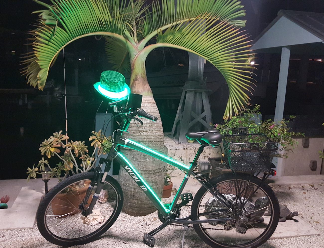 light-my-toy-new4