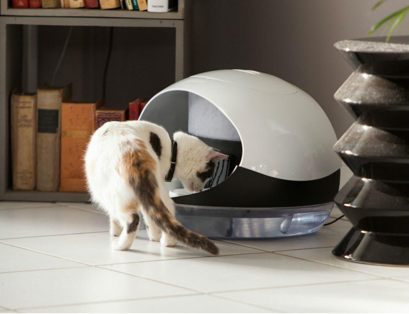 Catspad+Smart+Food+And+Water+Dispenser+For+Cats