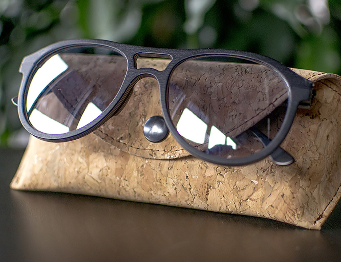 The Natural Extension of the Eyes – Visio spectacles by WOLF