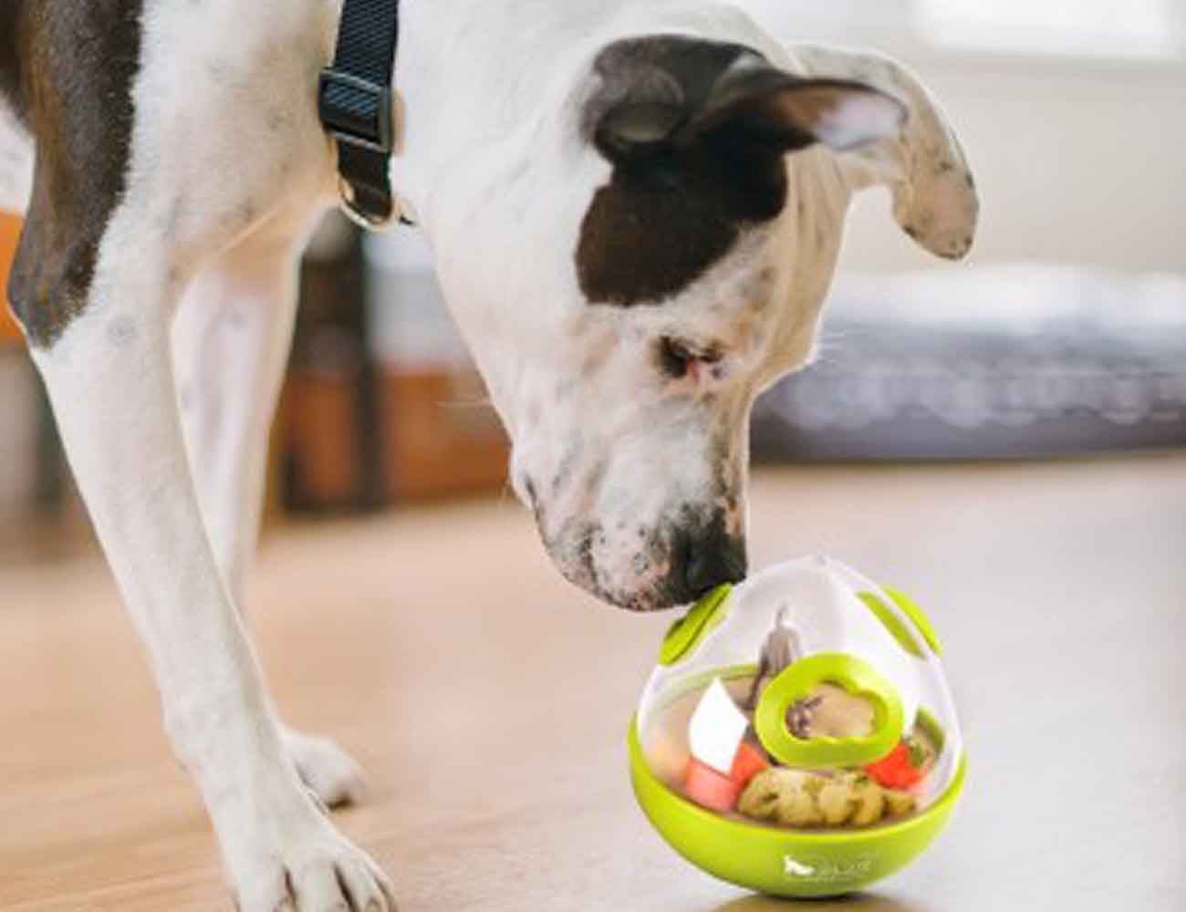 Wobble Ball 2.0 Dog Toy